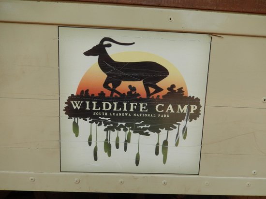 The Wildlife Camp: Logo