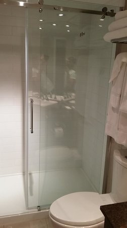 Hotel Manoir Victoria : Shower/toilet