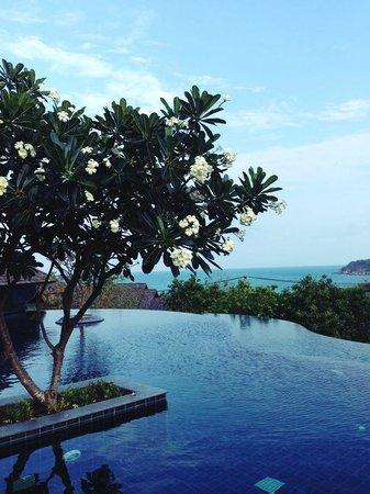 Nora Buri Resort & Spa : Oberer Infinitypool