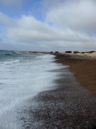 Hotel Spinguera Ecolodge: plage