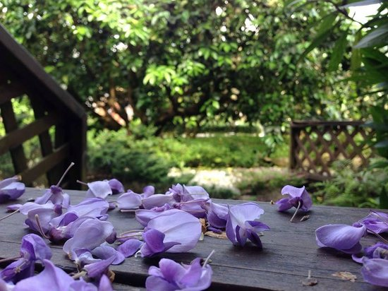 Liuxinju: 庭園