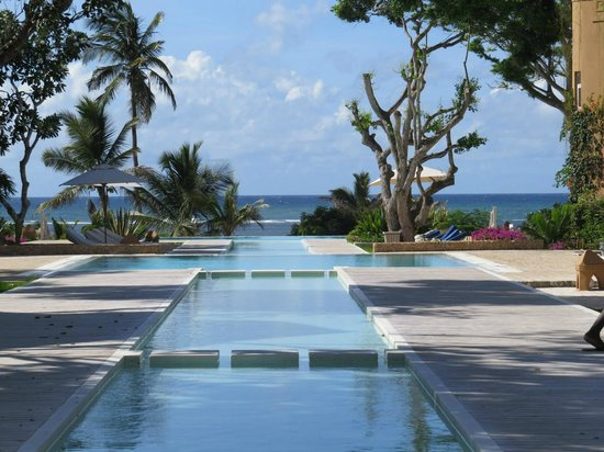 Medina Palms: Poolside