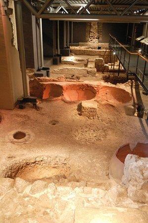 Museu d'Historia de Barcelona - MUHBA: Instalación vinícola