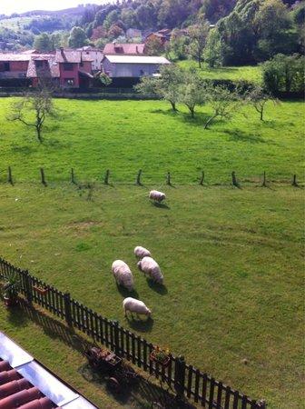 La Ercina Hotel Rural: Vistas desde la habitación