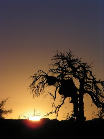 Namib Desert Lodge: Sunset