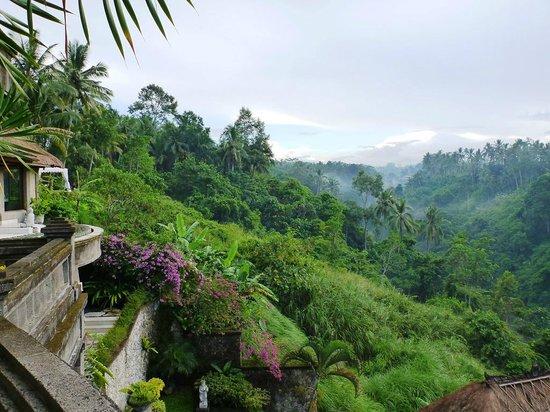Viceroy Bali: Aussicht vom Restaurant