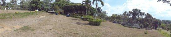 Paradizoo: View