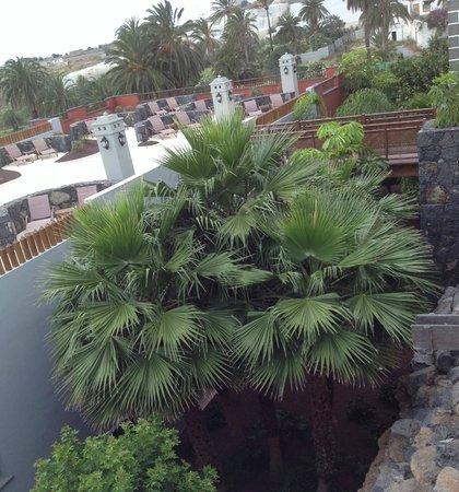 Melia Hacienda del Conde : Jardin