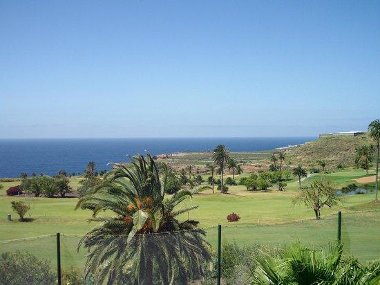 Melia Hacienda del Conde : Vistas al campo de golf