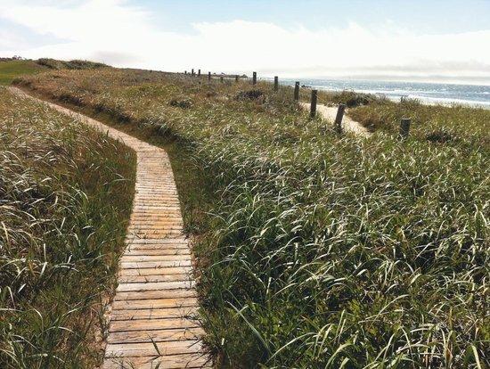 The Links at Spanish Bay: Links at Spanish Bay