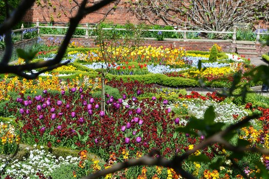 Shakespeare's New Place: Gardens of New Place