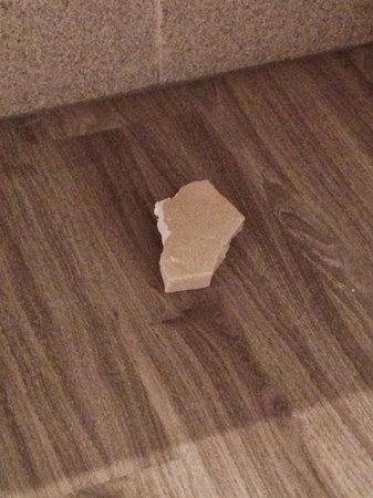 Sol Pelícanos Ocas: Se cayó de debajo del lavabo
