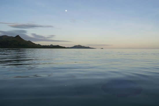Nukubati Private Island: View at sunrise from out the front of honeymoon bure