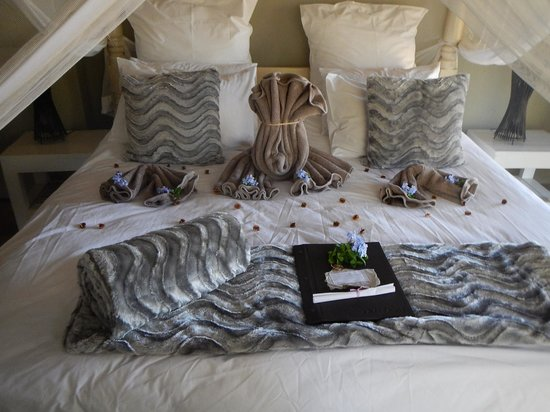 Kambaku Safari Lodge: A bed fit for a Queen