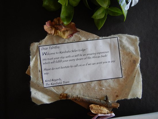 Kambaku Safari Lodge: What a nice touch!
