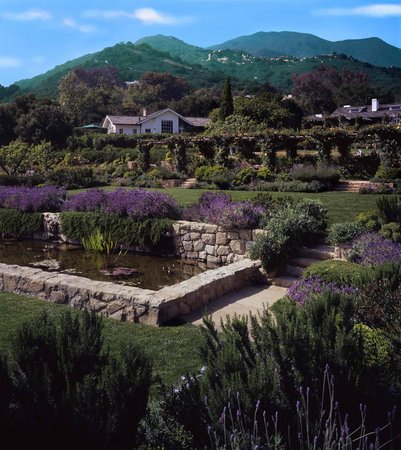 San Ysidro Ranch, a Ty Warner Property: Lily pond and gardens