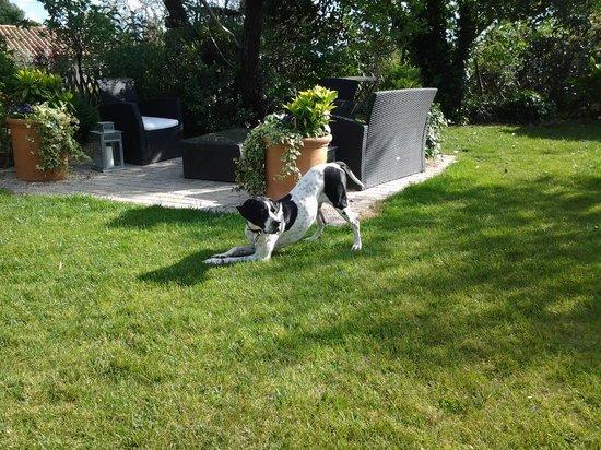 """Le Clos du Jas : il giardino con """"Eolo"""""""
