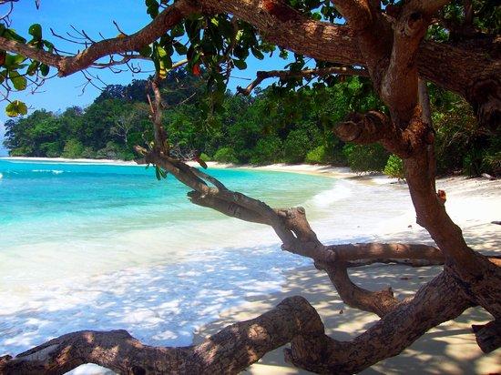 Radhanagar Beach: Neils Cove