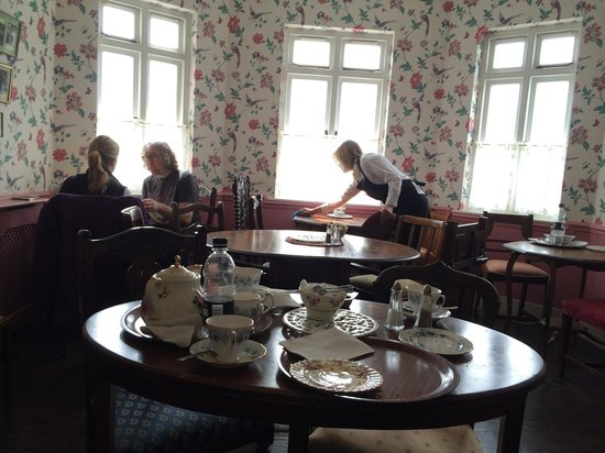 Mrs Knott's Tea-Room: Tearoom