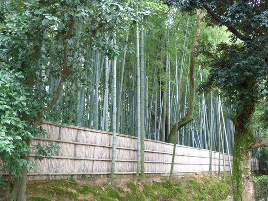 Daitoku-ji Temple: На территории Дайтокудзи