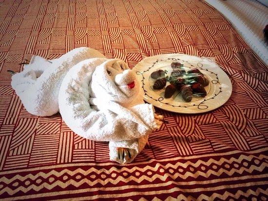 Nayara Resort Spa & Gardens: Waiting in our room