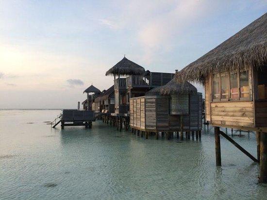 Gili Lankanfushi Maldives : Villa