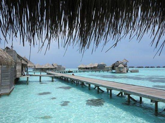 Gili Lankanfushi Maldives : Jetty2
