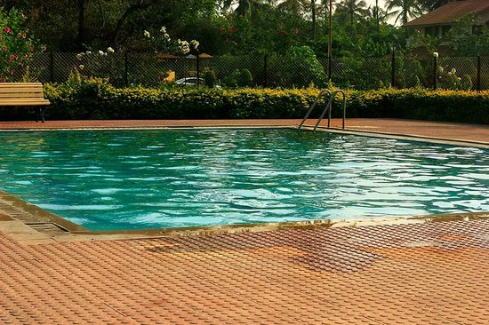 Orchard, The Resort : Swimming Pool