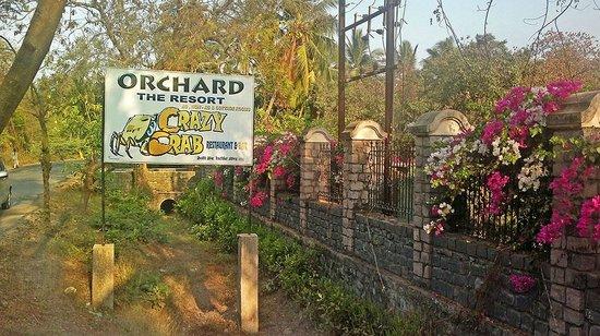 Orchard, The Resort: Crazy Crab Restaurant