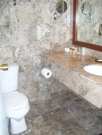 Sheraton Laval Hotel : bathroom