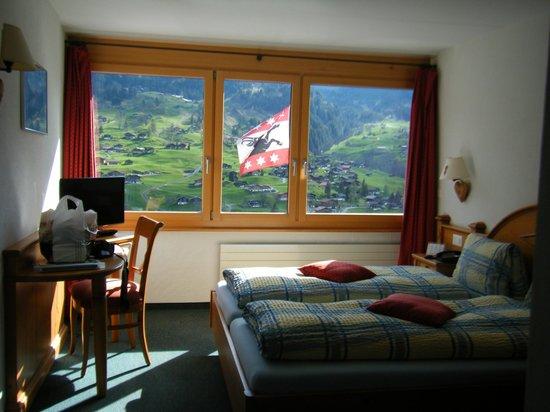Jungfrau Lodge Swiss Mountain Hotel : 部屋からの眺め