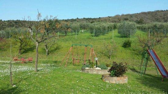 Agriturismo Ceres: giardino