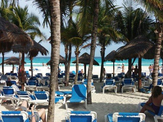 Sandos Playacar Beach Resort: Plenty of beach. Shade or sun.