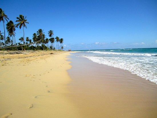 Dreams Punta Cana Resort & Spa: beach