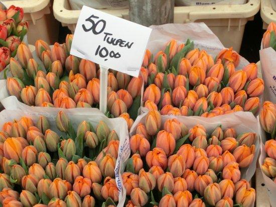 Wherels: tulipani