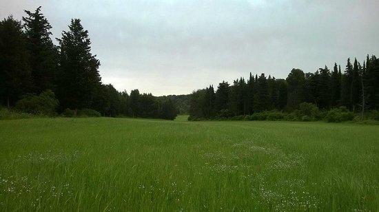 Alta Murgia National Park