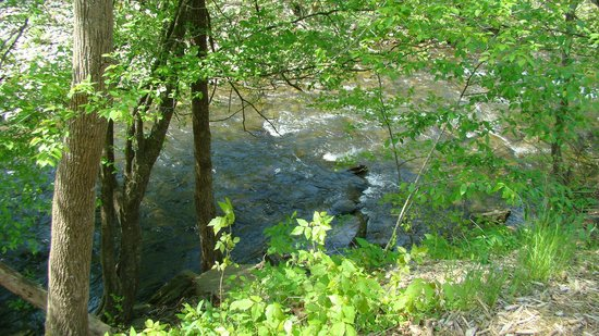 Sevier County, TN: The river between Gatlinburg and Pigeon Forge