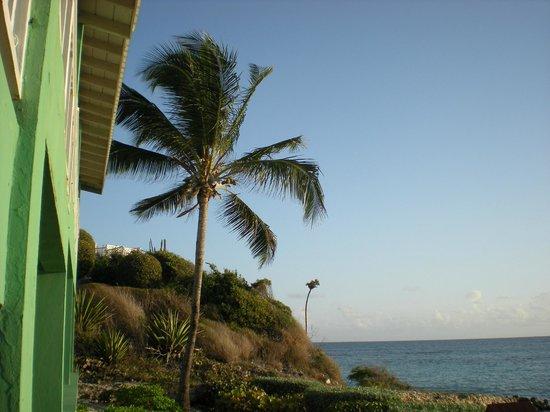 Pineapple Beach Club Antigua: View From Room 525