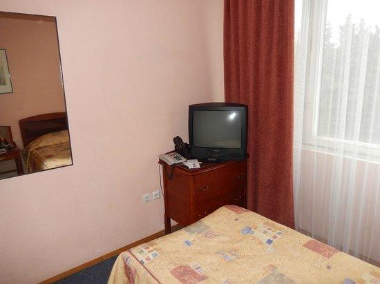 Azimut Hotel Saint Petersburg: Телевизор не включали