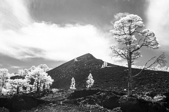 One Day In Tenerife: Infrared - experiment
