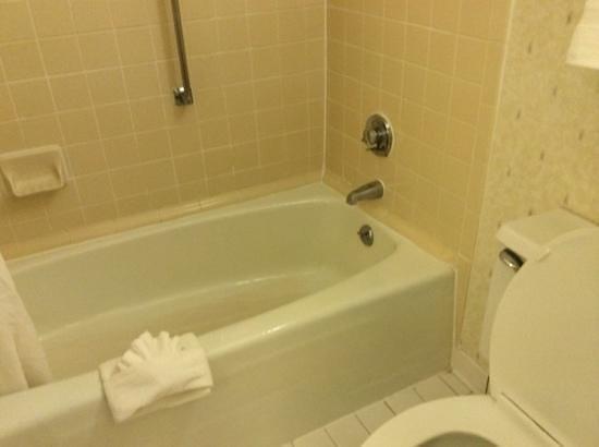 Quality Inn Fredericksburg, Central Park Area: 2nd bathroom