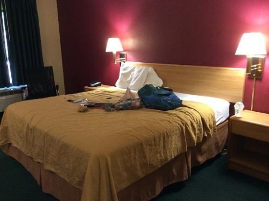 Quality Inn Fredericksburg, Central Park Area: king bed
