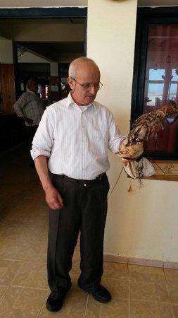 Araignee Gourmande : Le patron avec un homard