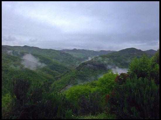 Locanda del Gallo: Vista la mattina