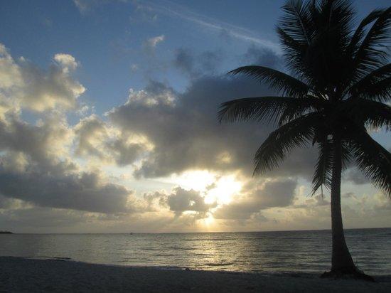 PavoReal Beach Resort Tulum: Amanecer