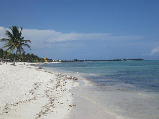 PavoReal Beach Resort Tulum: km de playas para caminar