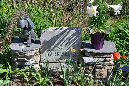 Barkwells, The Dog Lovers' Vacation Retreat: Barkwell's entrance