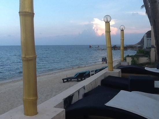Samui Beach Resort: vue des transats piscine