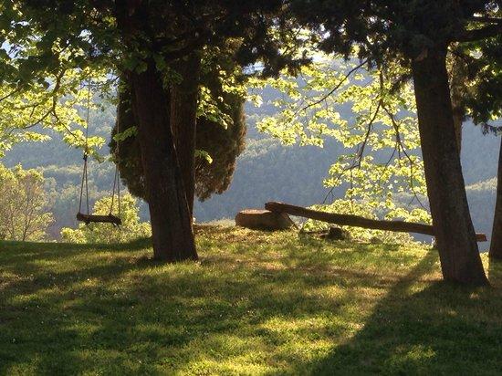 Locanda del Gallo: Vista