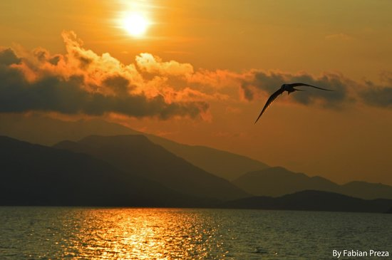 Six Senses Ninh Van Bay: Sunset with birds.